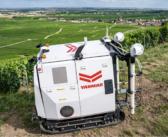 Yanmar unveils autonomous vineyard robot